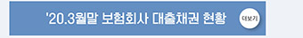'20.3월말 보험회사 대출채권 현황
