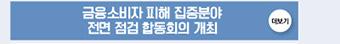 금융소비자 피해 집중분야 전면 점검 합동회의 개최