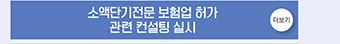소액단기전문 보험업 허가 관련 컨설팅 실시